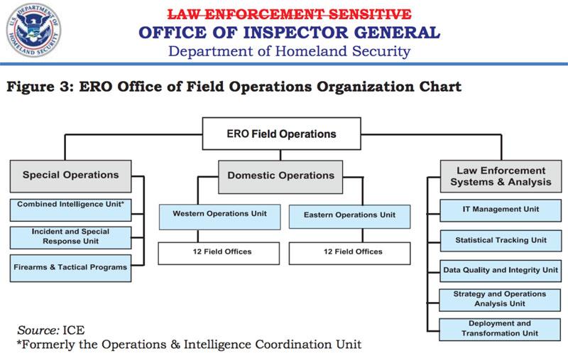 ERO Office of Field Operations Organization Chart