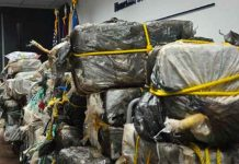 Contraband has an estimated street value of more than $29 million