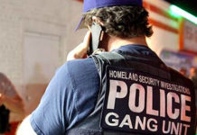 In fiscal year 2019, HSI agents made nearly 4,000 arrests of transnational gang members; of those, more than 300 were tied to MS-13.